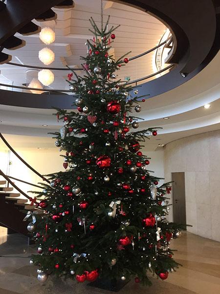 weihnachtsbaum_kundschaft_5