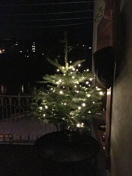 weihnachtsbaumbasel_kundenfoto_2