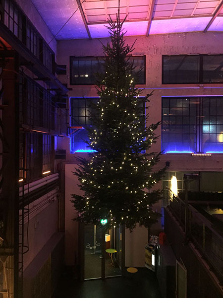 Weihnachtsbaumbasel Blindekuh